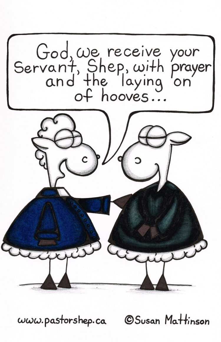 minister ordination laying on of hands hooves pastor shep christian cartoon